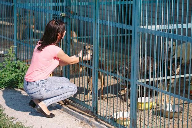 Mulher fazendo carinho com cão em abrigo