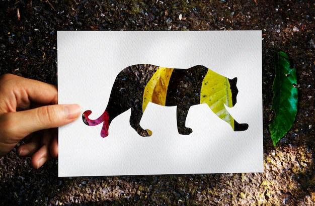 Animal Instinct Natural Survive Wildlife Free Photo