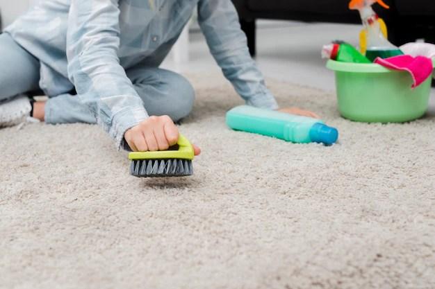 Close-up woman brushing carpet Free Photo