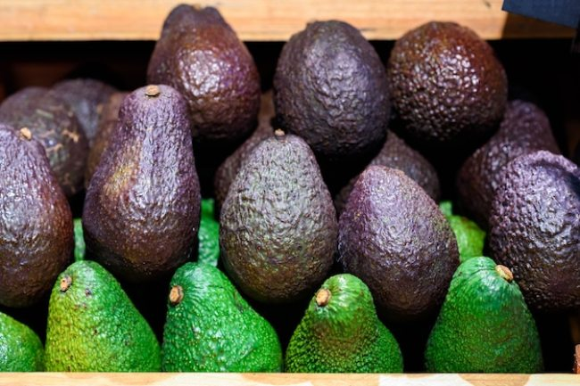 Fresh green and black avocado Premium Photo