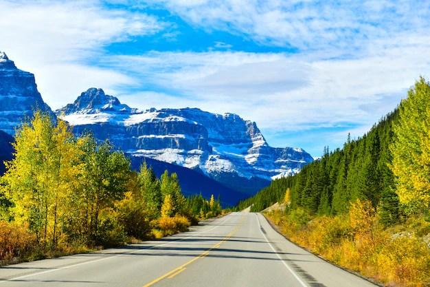 The road 93, highway in alberta, canada | Premium Photo