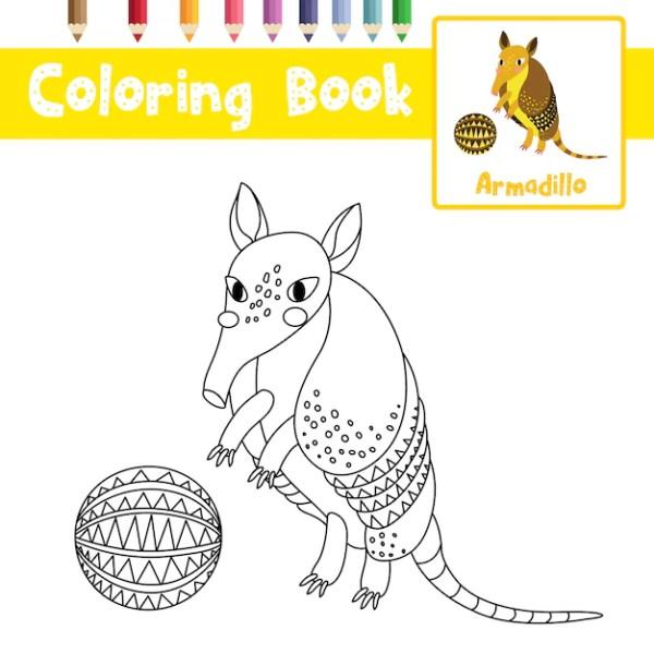 armadillo coloring page # 69