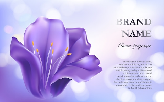 Violet Flower Vectors Photos And PSD Files Free Download