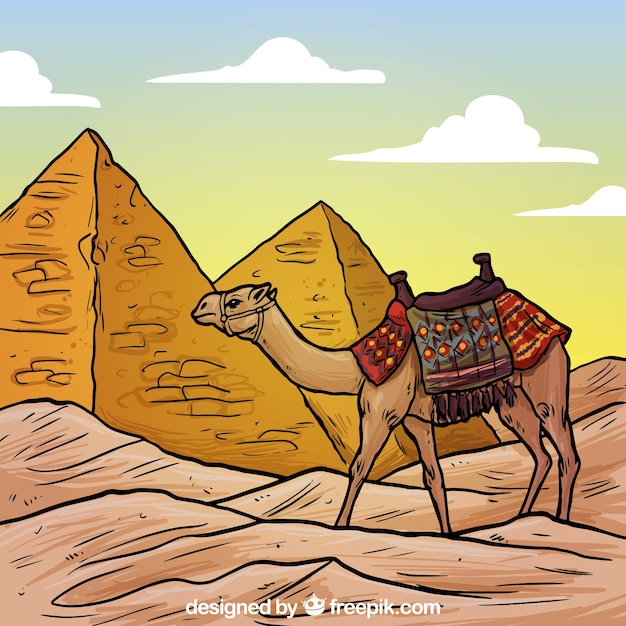 Egyptian Pyramids And A Camel Illustration Vector Free