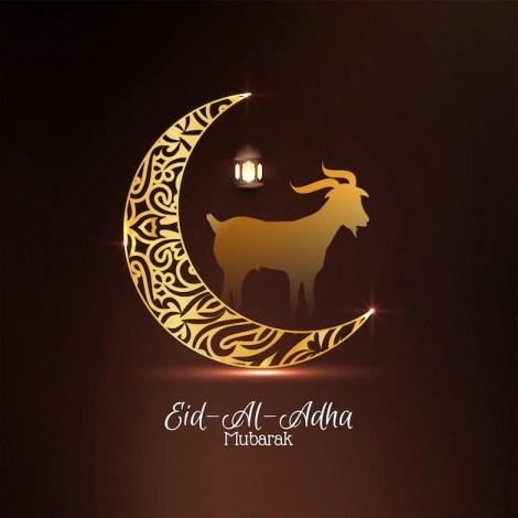 Islamic festival eid-al-adha mubarak with moon design Free Vector
