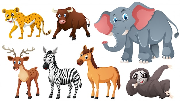 Free Animals Vectors 220 000 Images In Ai Eps Format