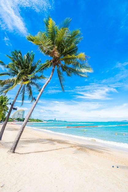 plage avec des palmiers photo gratuite