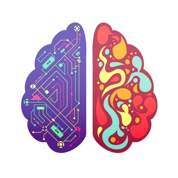 Izquierda y derecha cerebro humano hemisferios cerebrales pictórica figura colorida con diagrama de flujo y zonas de actividad ilustración vectorial vector gratuito