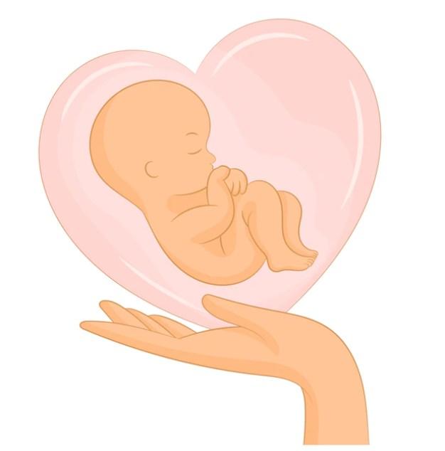 Ilustração de bebê dentro de um coração