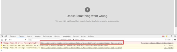 Google_map_error_console