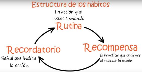 Estructura de los hábitos.