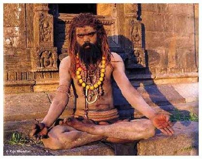 Seorang Yogi yang mengabaikan realitas dunia untuk mencari nirwana