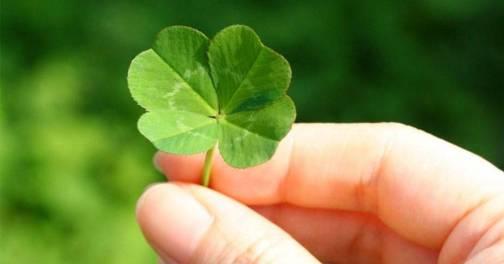 La suerte no existe.