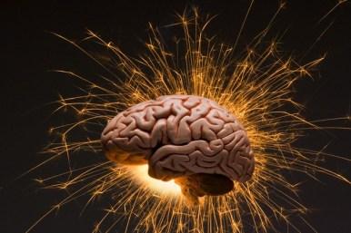 Otak, sumber segala keputusan kita