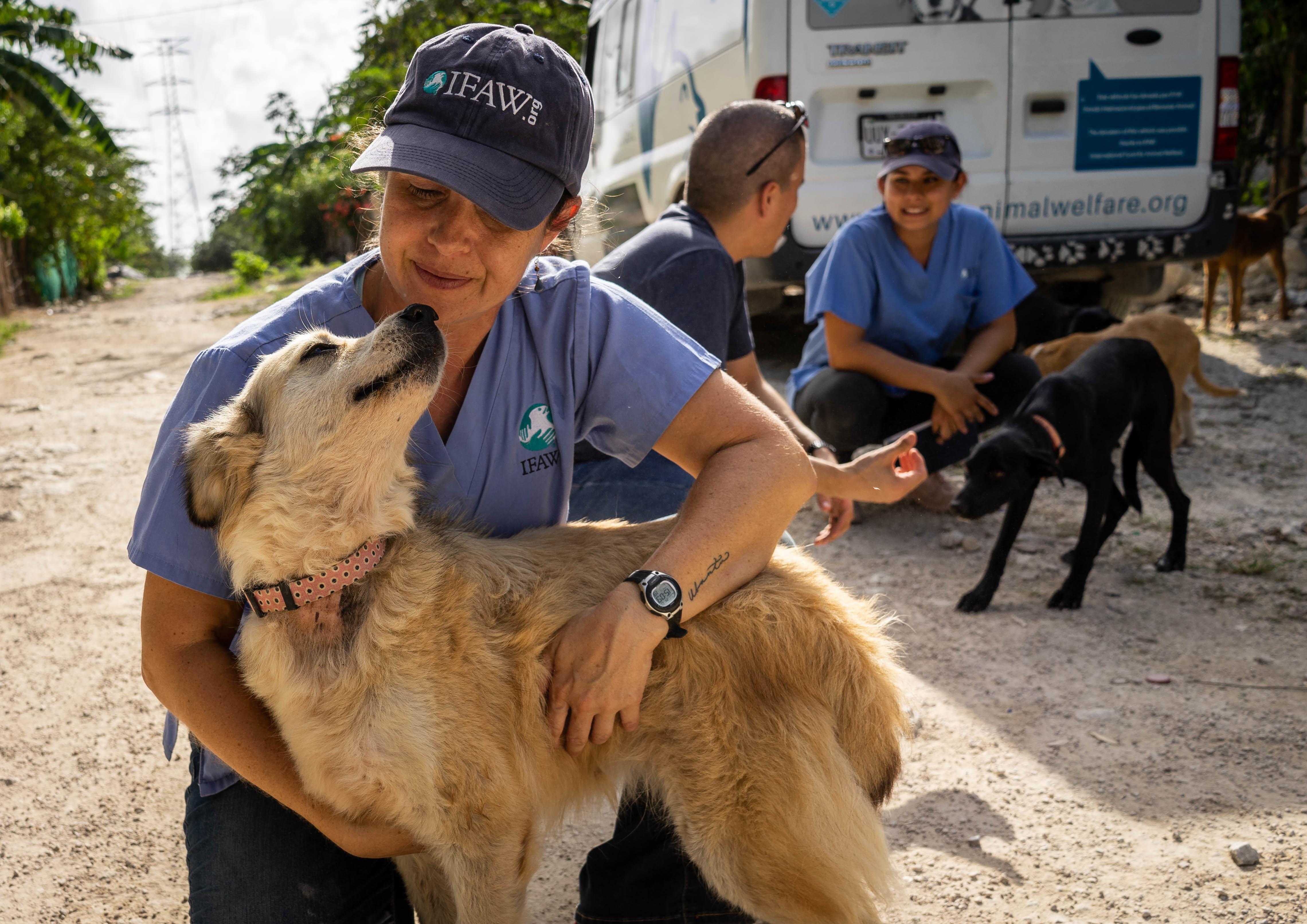 Einsatz für ein besseres Miteinander von Menschen und Tieren in Mexiko.