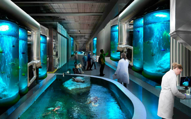 54e216fbe58ece72c4000019_foster-partners-breaks-ground-on-taiwan-s-national-museum-of-marine-science-and-technology-_fp