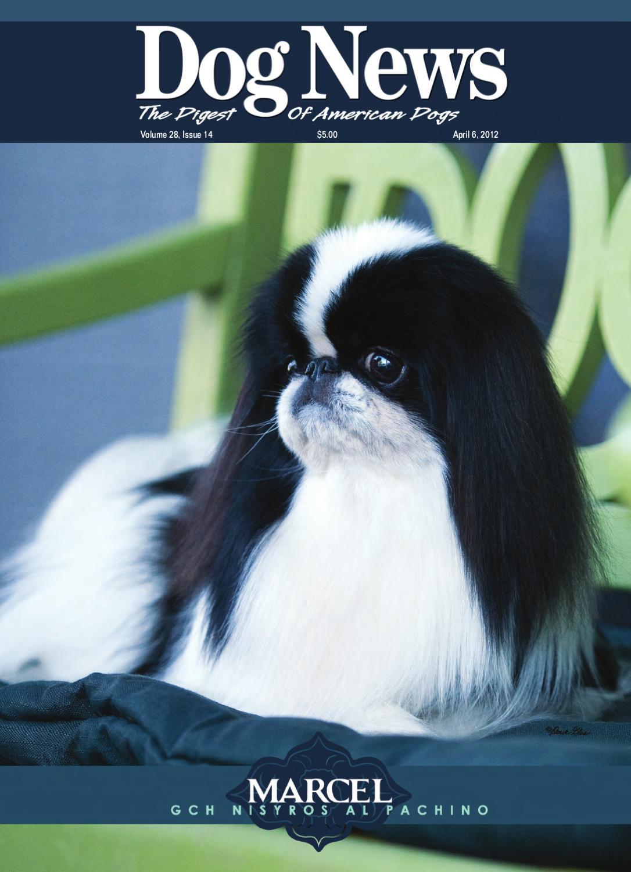 dog news april 6 2012 by dog news issuu