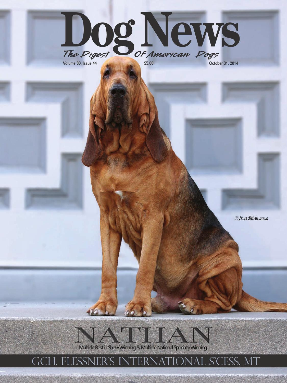 dog news october 31 2014 by dog news
