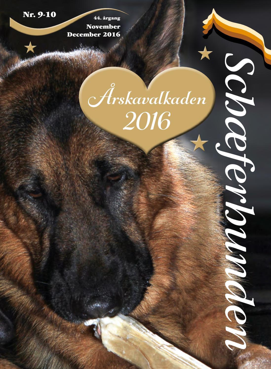 Schaeferhunden Nr 9 10 Web By Randi Salzwedell Issuu