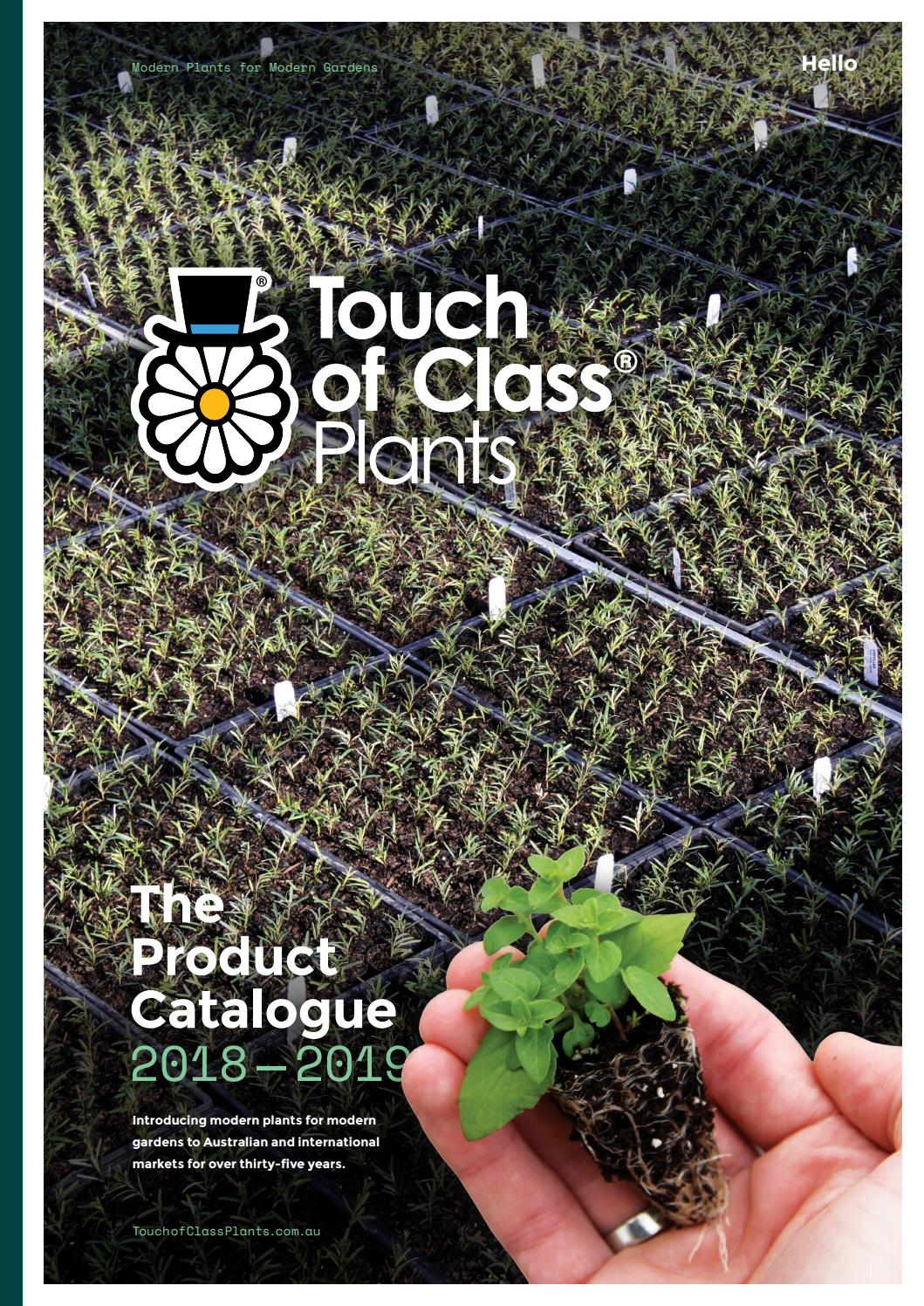 Touch Of Class Product Catalogue 2018 2019 By Touch Of Class
