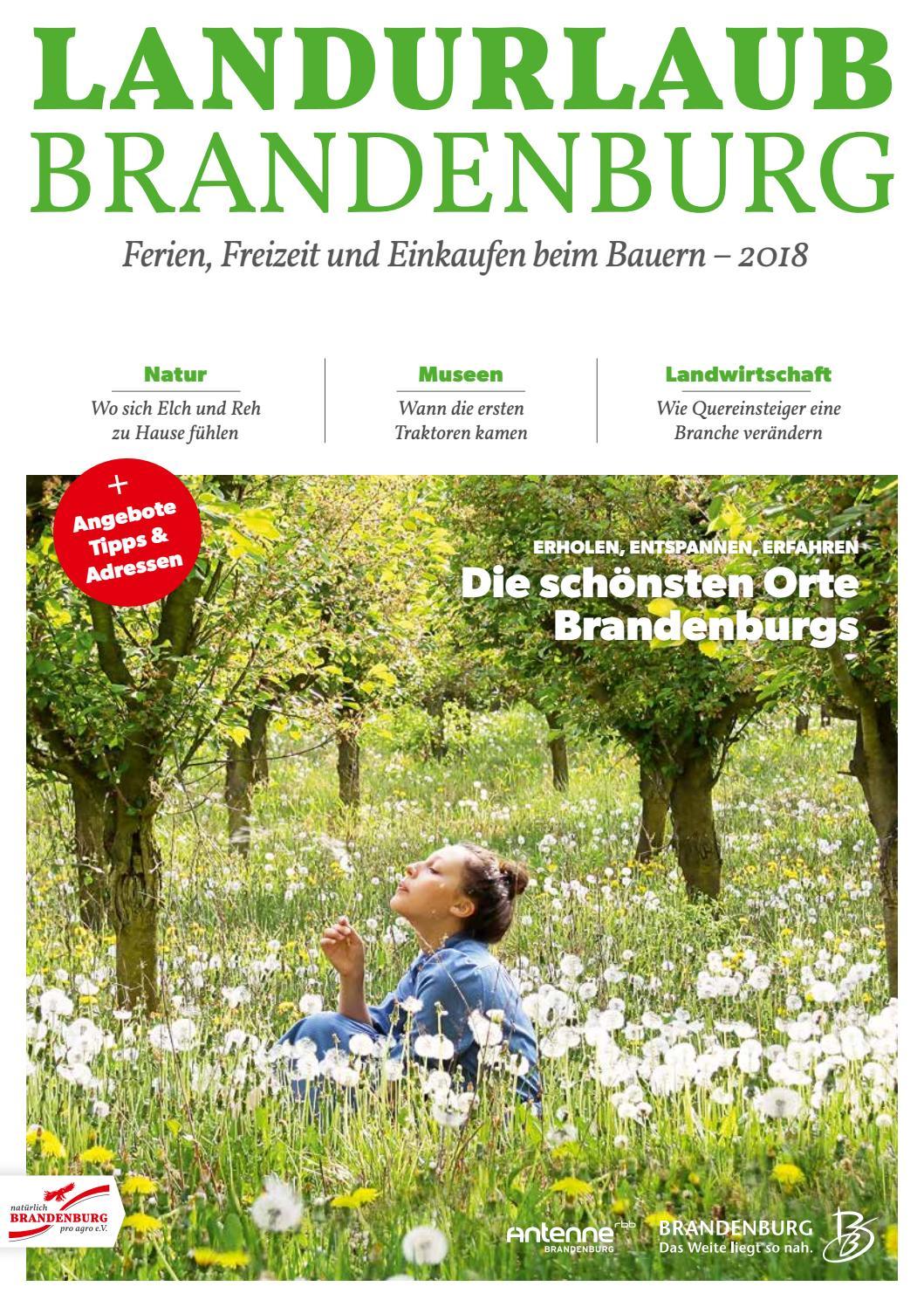 Spure Die Sonne Swiss News