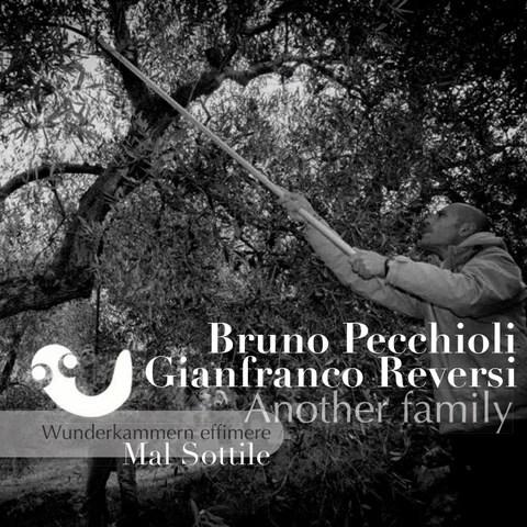 """Cover of """"Bruno Pecchioli e Gianfranco Reversi"""""""