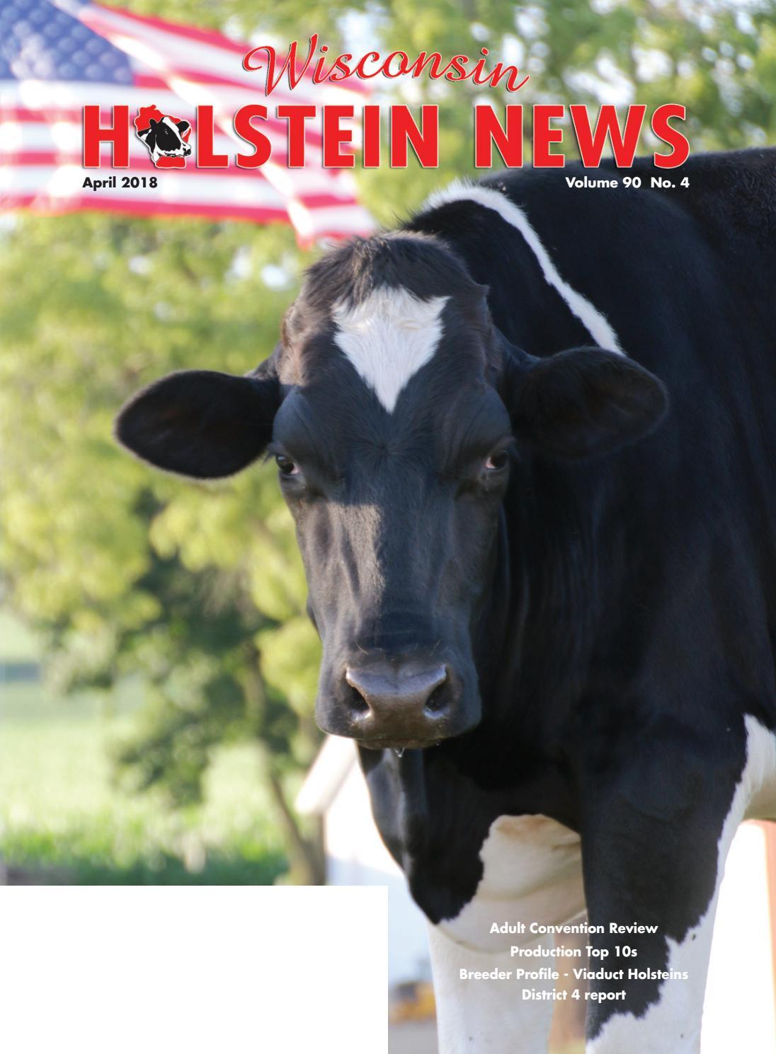 cash cow pro review