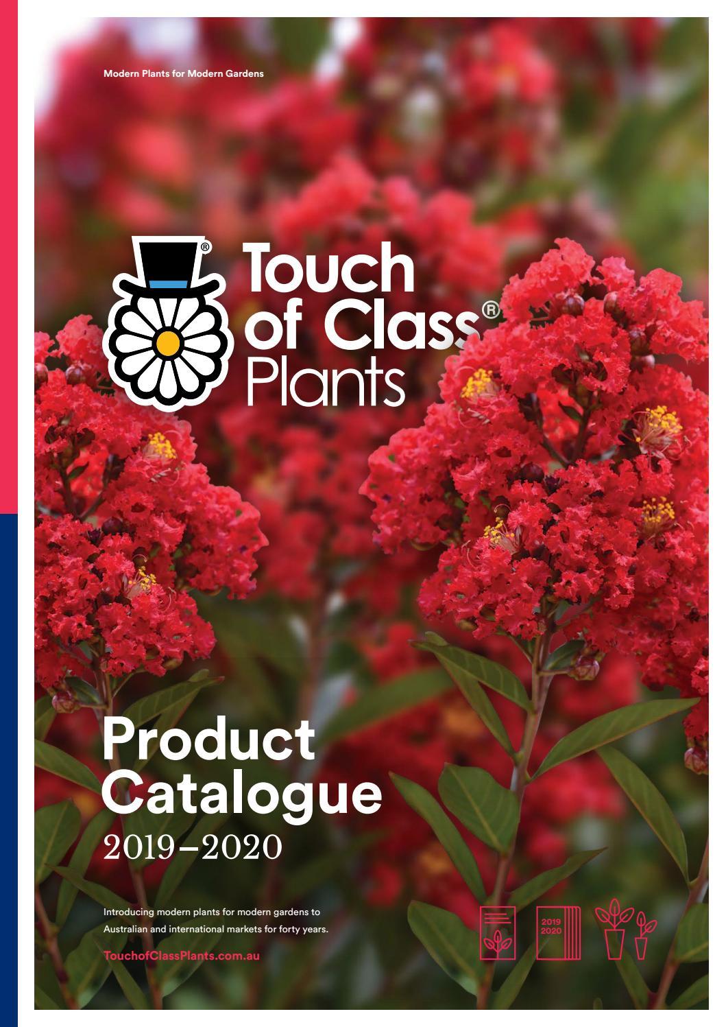 Touch Of Class Plants Product Catalogue 2019 2020 By Touch Of