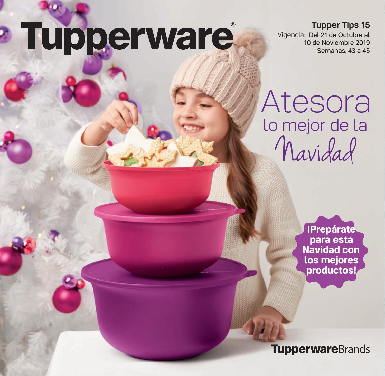 Mexico De Tips 1 Catalogo De Tupper
