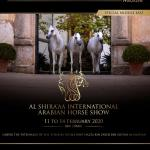 Arabian Horse Magazine Special Middle East 2020 By Arabian Horse Magazine Issuu