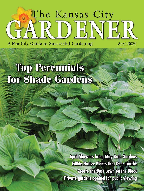 Kcg Apr20 By The Kansas City Gardener Issuu