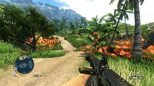 Test Far Cry 3 PC - Screenshot 84