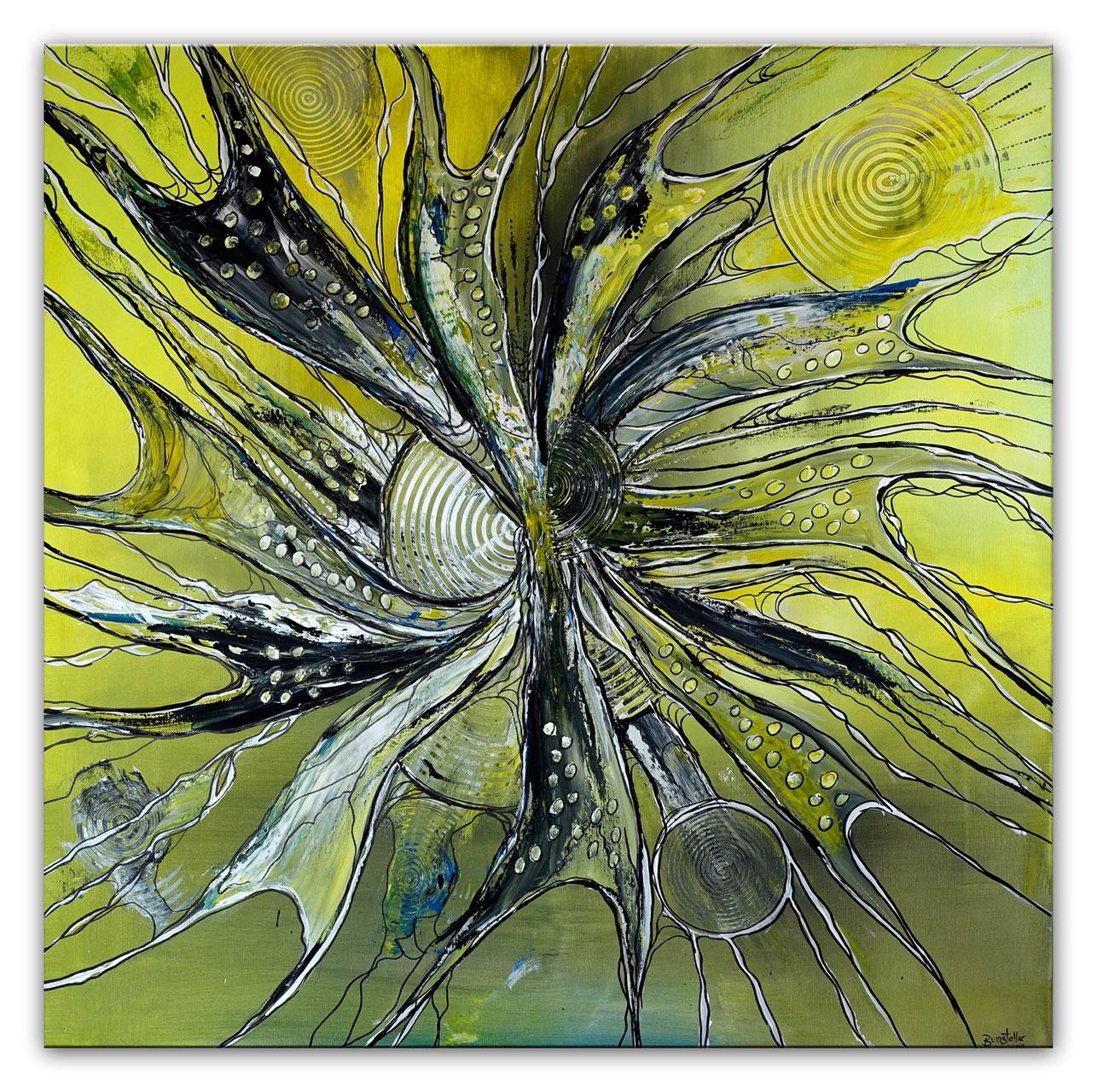 Fotohomepage Acrylbild Seerosen