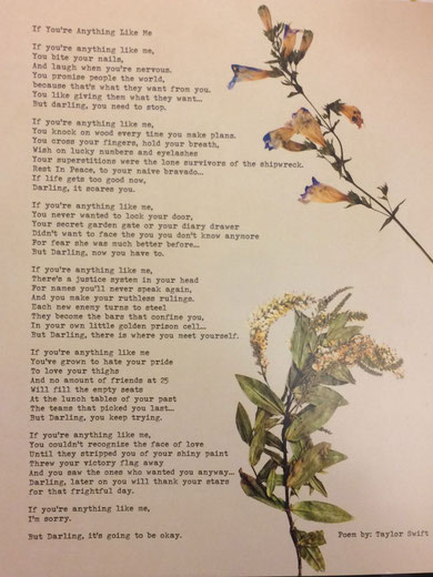 Poems Taylor Swift Switzerland
