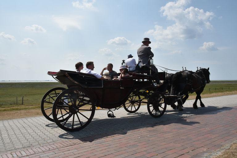 Baltrum Ihre Gastgeber 2018 By Ostfriesland Tourismus Gmbh Issuu