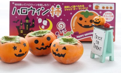 「ハロウィンの柿」の画像検索結果