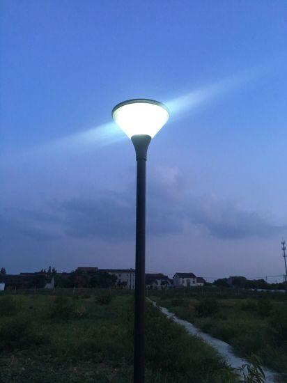 solar powered garden lights green