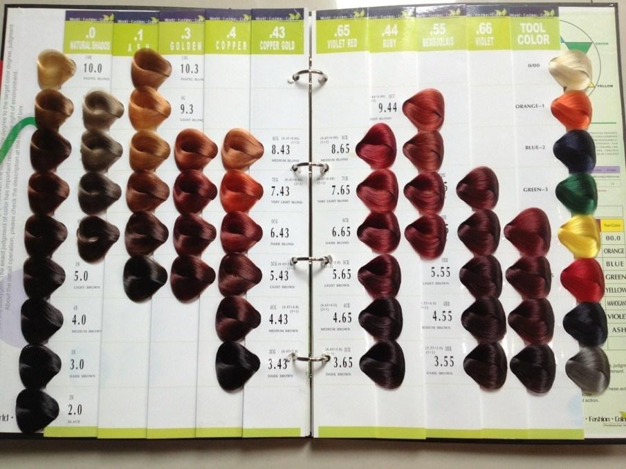 Loreal Professional Inoa Color Chart