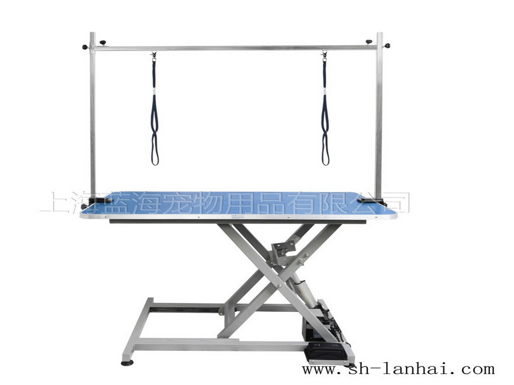 China Electric Lifting Grooming Table Lt