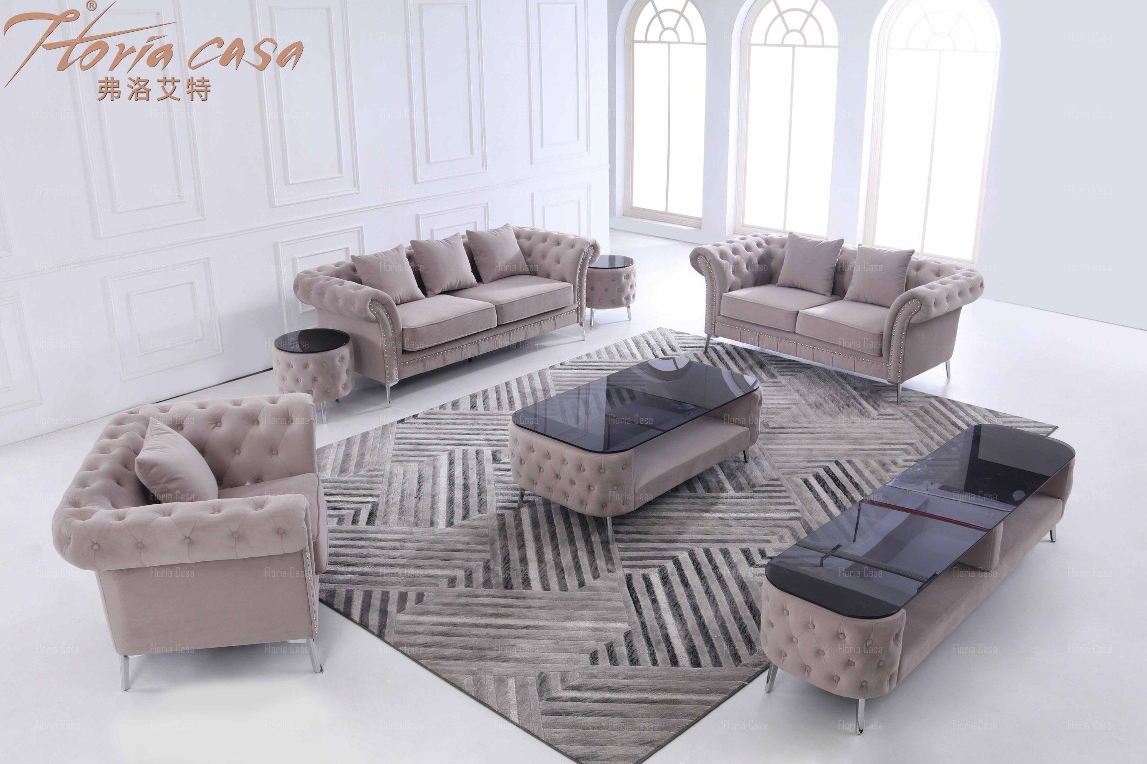 furniture sofa set with coffee table