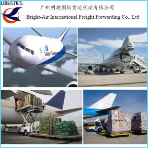 Global Shipping Agent Cargo Ship Tracking Air Freight From China to     Global Shipping Agent Cargo Ship Tracking Air Freight From China to  Worldwide