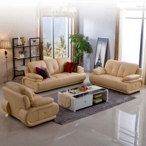 China Leather Sofa Small Apartment