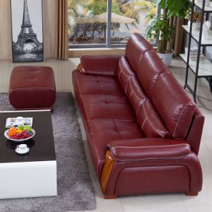 China Leather Sofa Top Layer