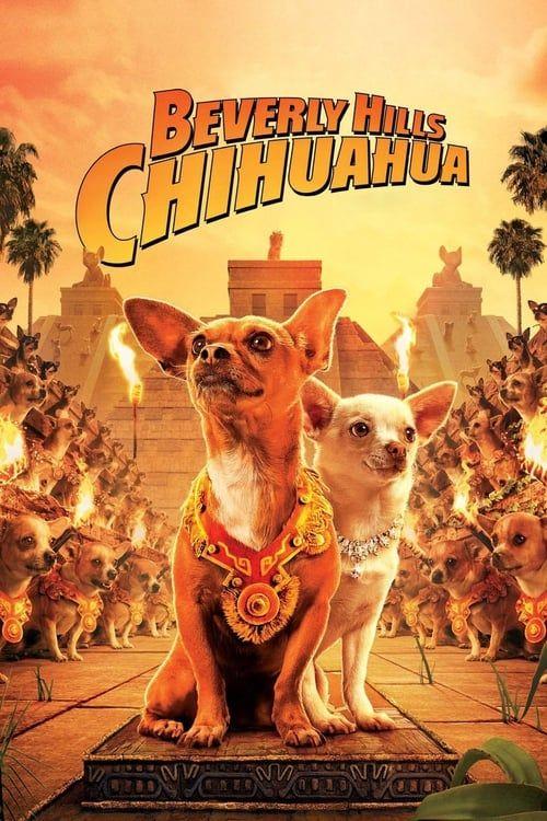 Key visual ofBeverly Hills Chihuahua