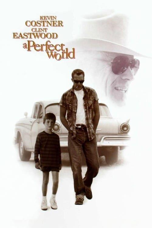 Key visual ofA Perfect World