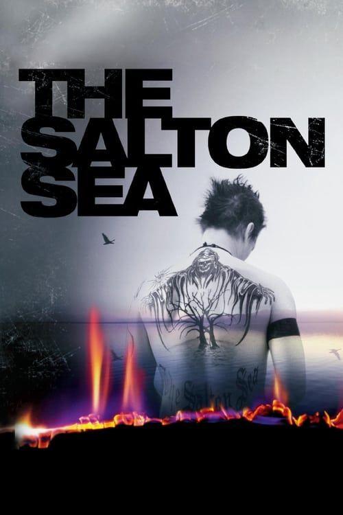 Key visual ofThe Salton Sea