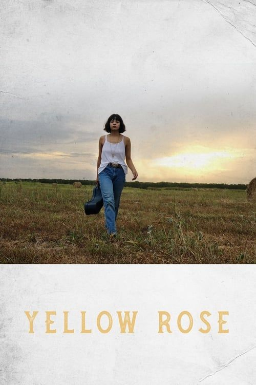 Key visual ofYellow Rose