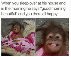 Being in a relationship is a huge ego-booster according to this meme