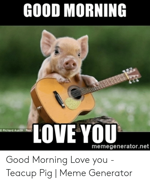 Spice up Your Day With Cute Relationship Memes for Your Partner