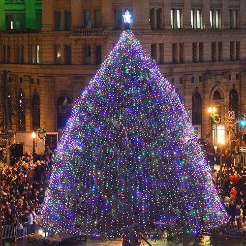 Lighting Tree Nyc